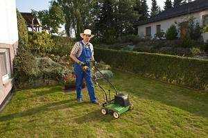 Den Rasen Vertikutieren Wann Und Wie Alle Infos Hier