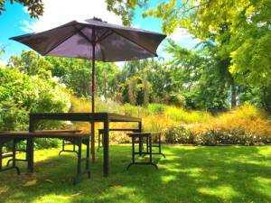 Schattenrasen anlegen so gehts viele infos tipps for Water wise garden designs south africa